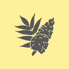 https://www.distilleriedufjord.com/app/uploads/2019/10/epice-lily-b.png