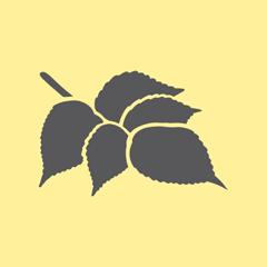https://www.distilleriedufjord.com/app/uploads/2019/10/epice-lily-c.png
