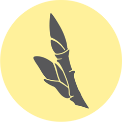 https://www.distilleriedufjord.com/app/uploads/2019/10/epice-lily-d.png